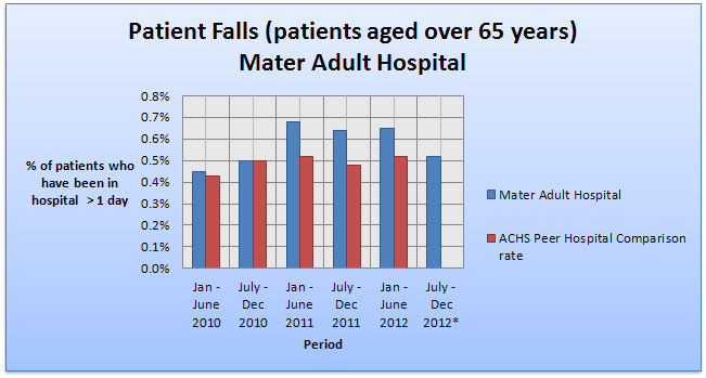 Patient falls MHB over 65 years 2004